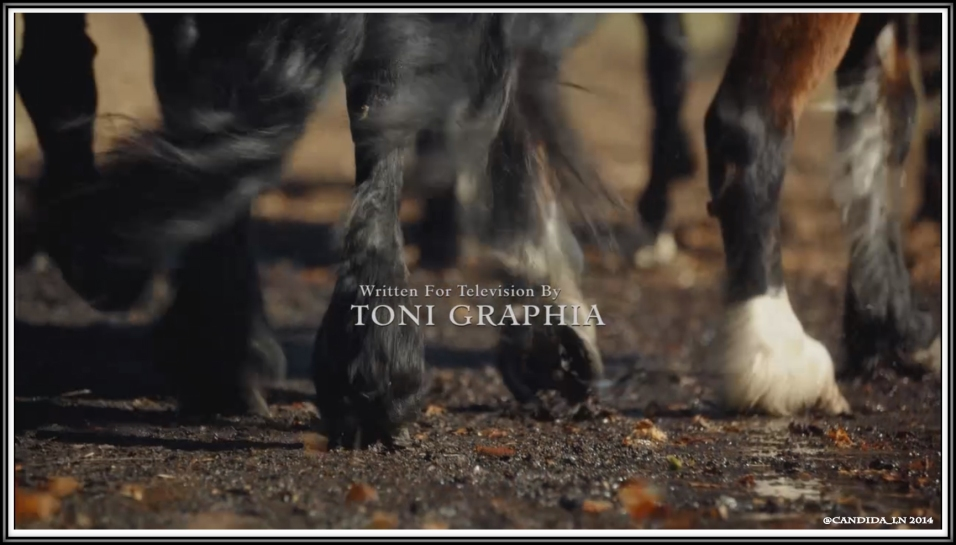 Toni_Graphia