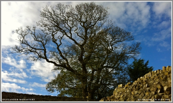 Blue skies over Aberdour Castle.