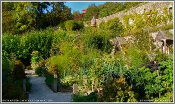 Castle Leoch Gardens, lower level.