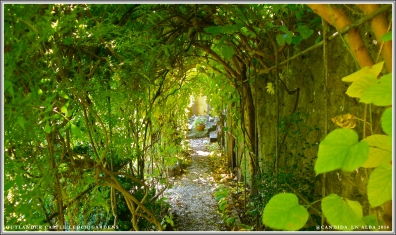 Castle Leoch Gardens, trellis tunnel where Geillis enters to meet Claire.