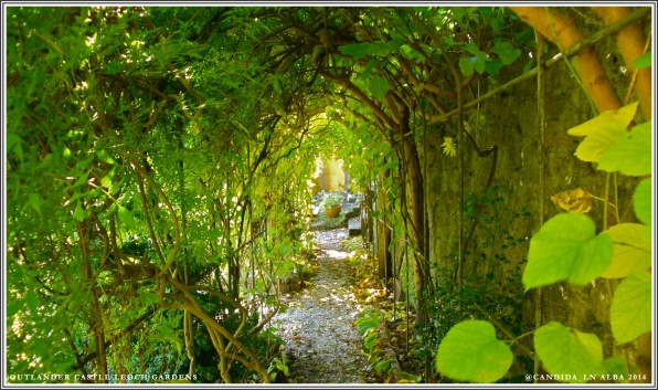 Castle Leoch Gardens, trellis tunnel where Geillis enters to meet Claire.