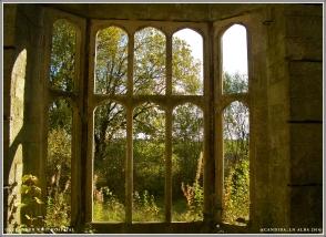 Lower level bay window.